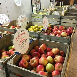 The Apple Industry in Wisconsin