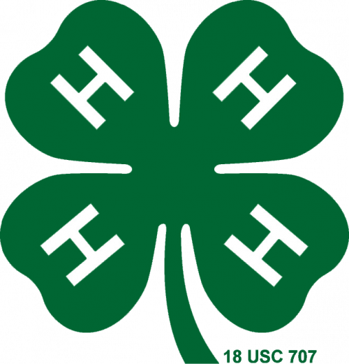 2020 Wisconsin 4-H Foundation Scholarship Applications Now Being Accepted