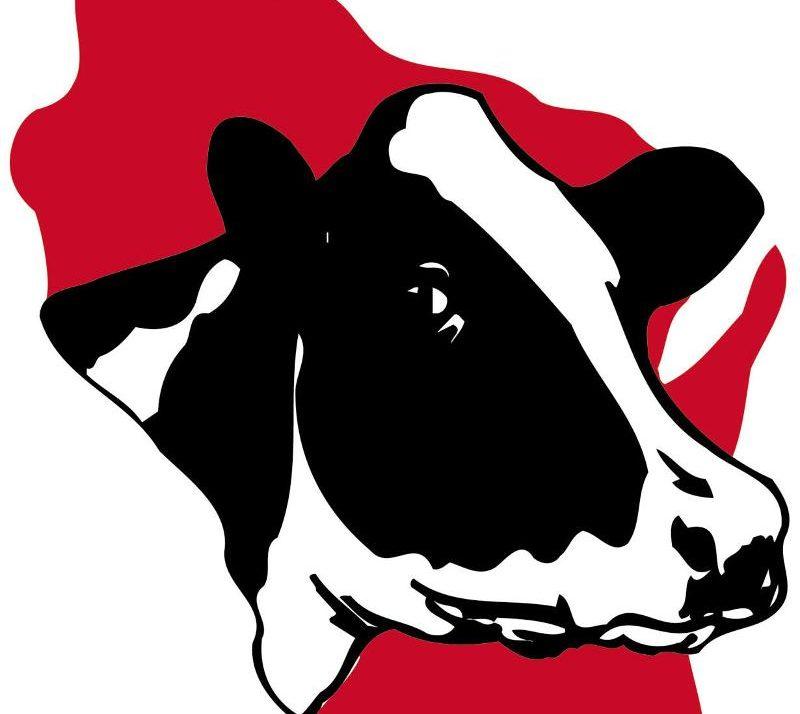Wisconsin Holstein Association Announces Summer Intern