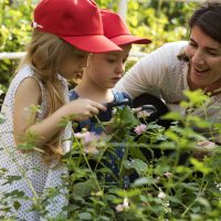 Farm-To-School Expands Partnerships