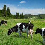 Farmers Union to host estate planning workshops in December