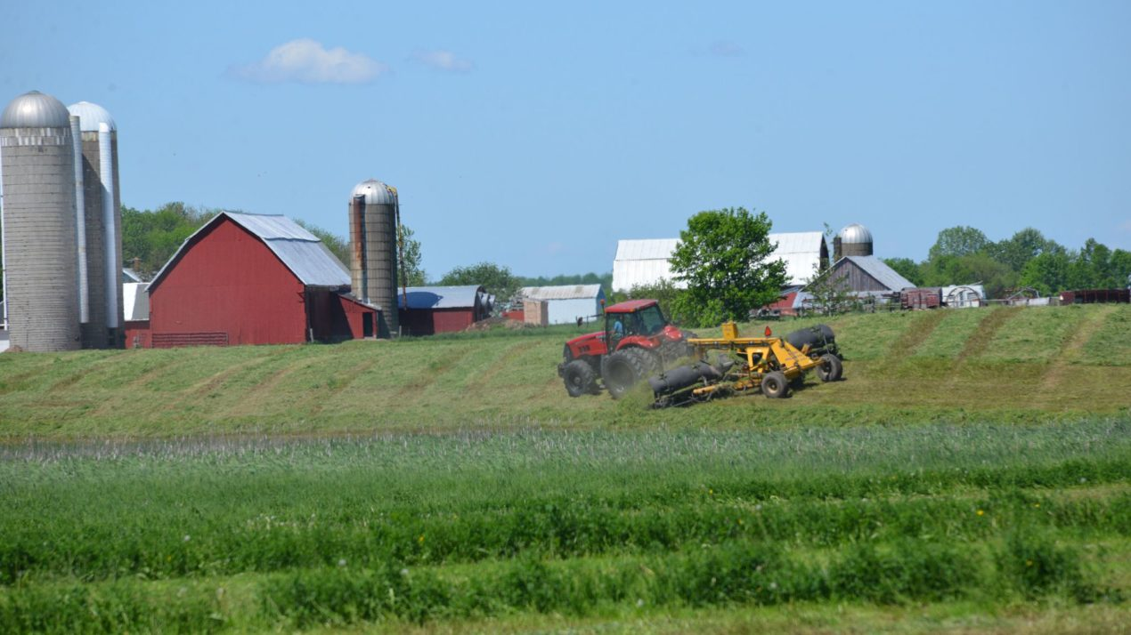 Confidence In WI Crops Improves