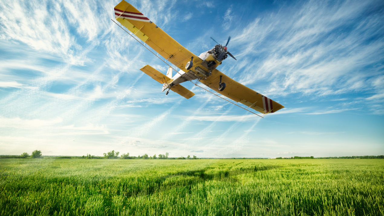 Next Round of Gypsy Moth Aerial Treatments Planned