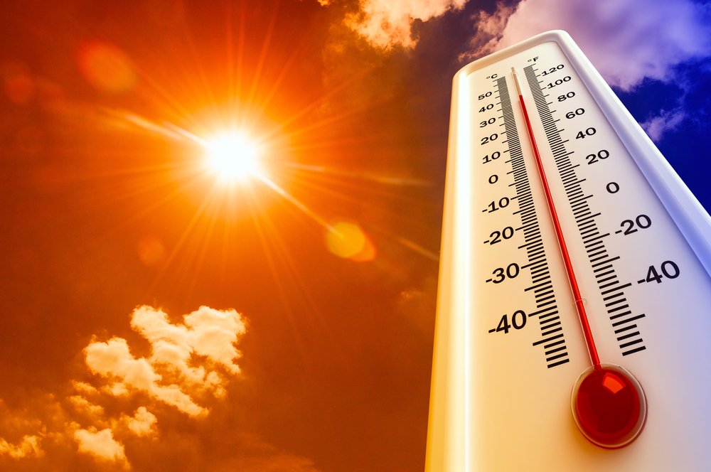 Protect Your Pets and Livestock from Extreme Heat Exposure
