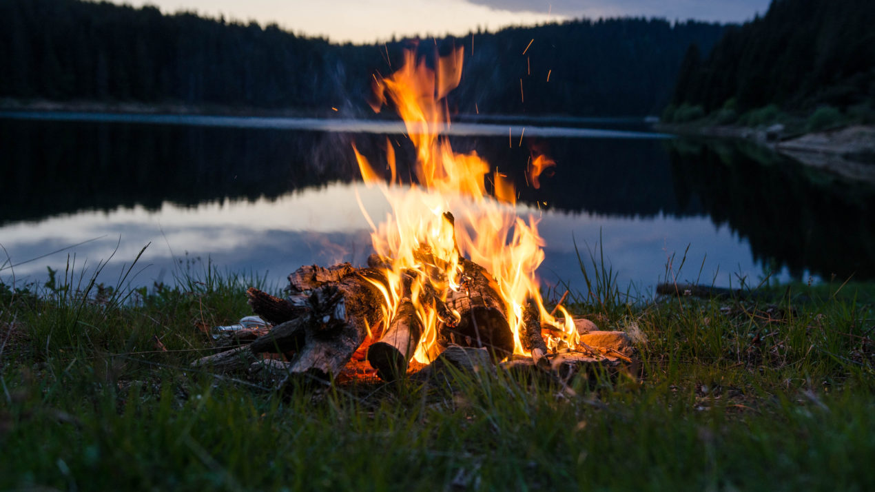 Warm Up by the Fire Using Local or Certified Firewood