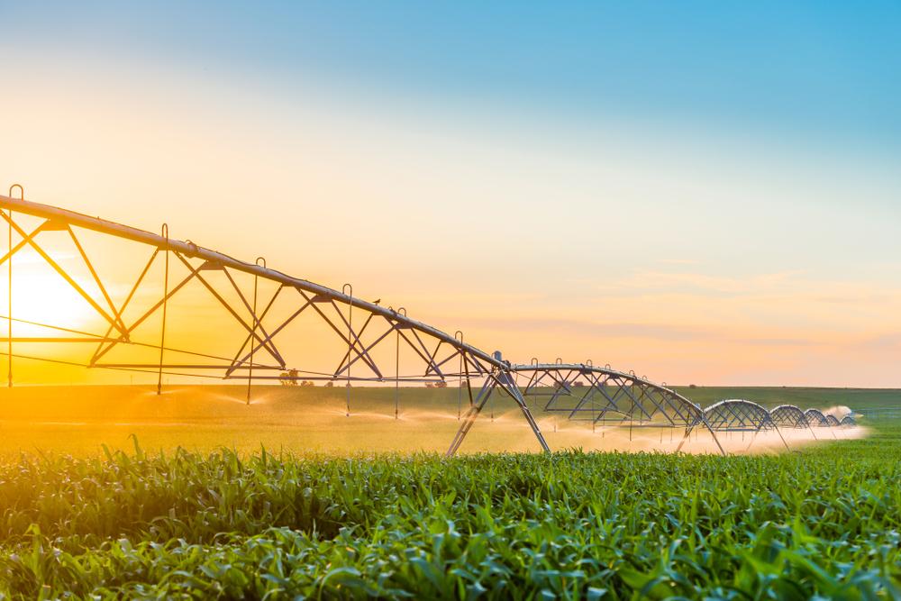 Irrigation Trends