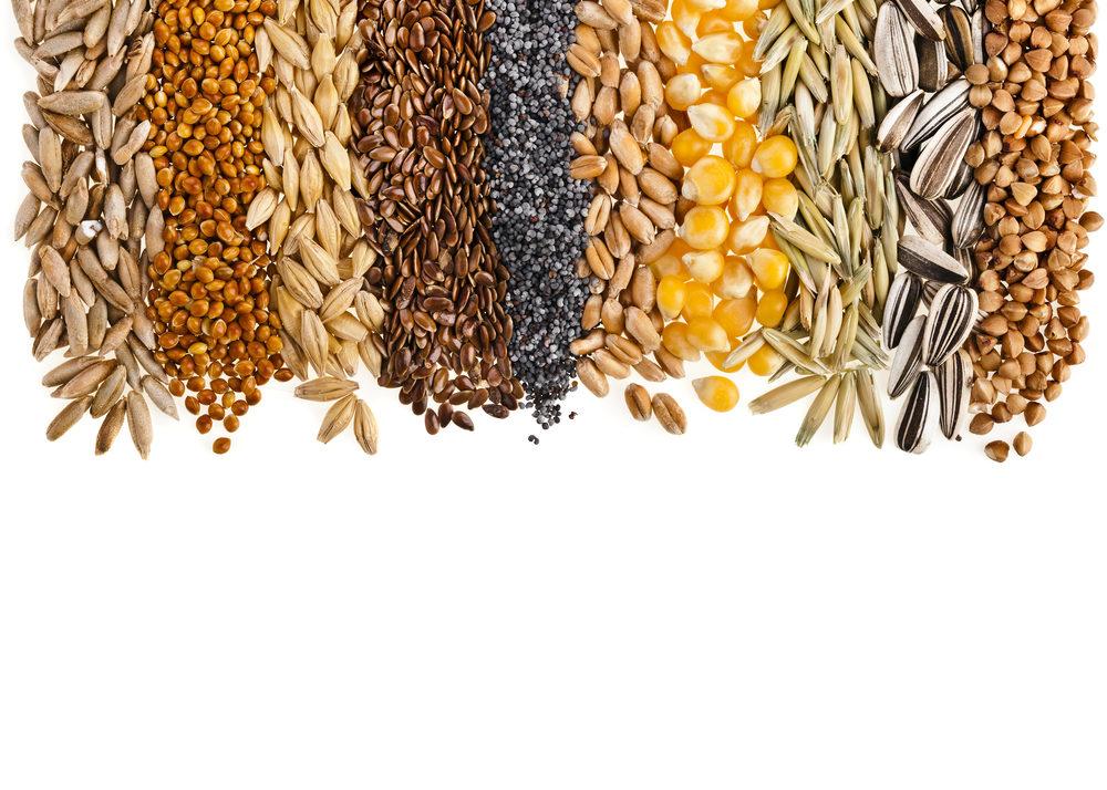 Understanding Seed Trade