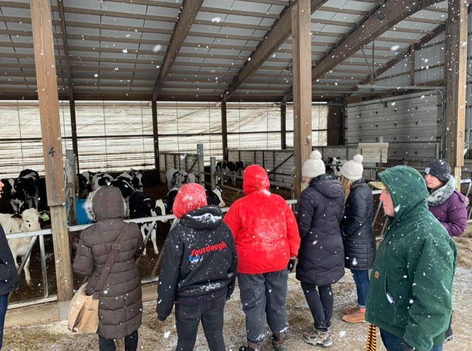 Harvard Law Students Visit Wisconsin Dairy Farm