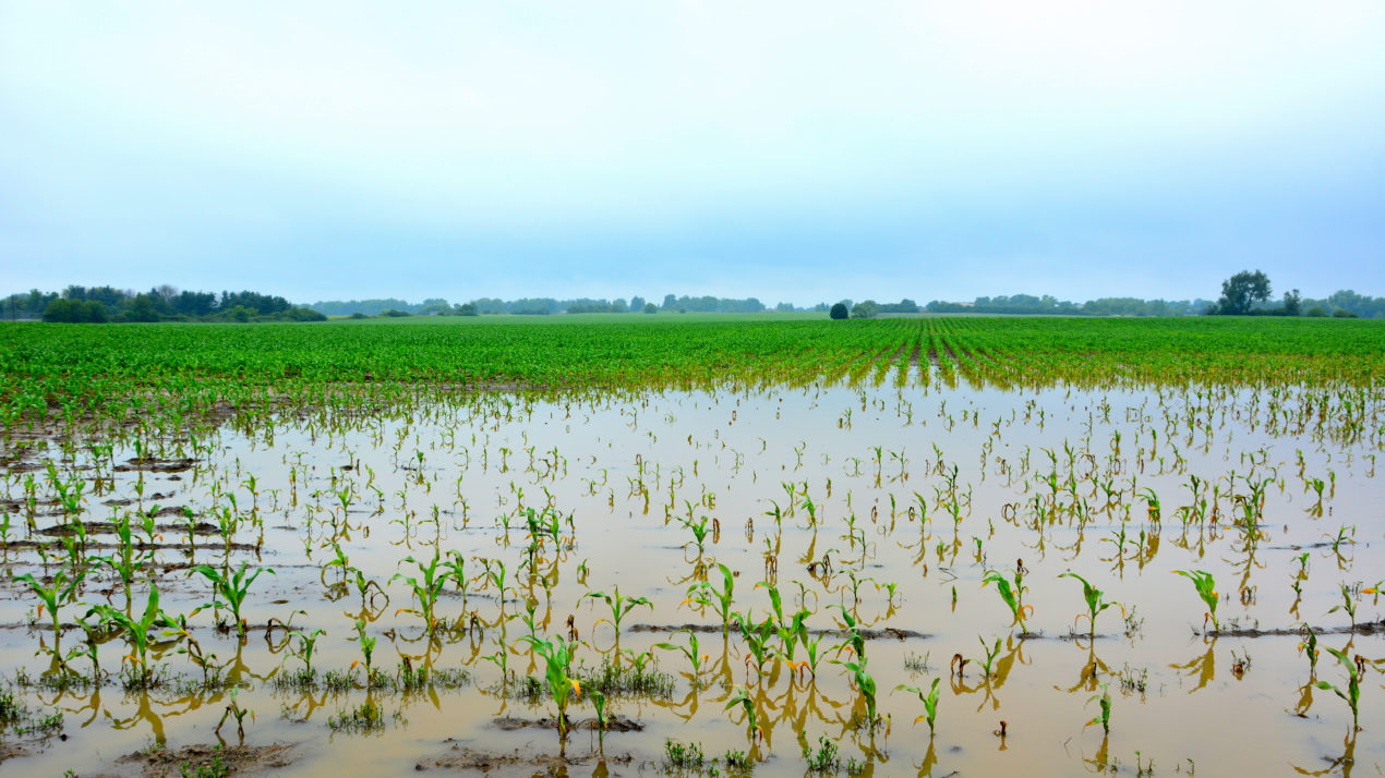 14 Wisconsin Counties Designated as Primary Natural Disaster Areas