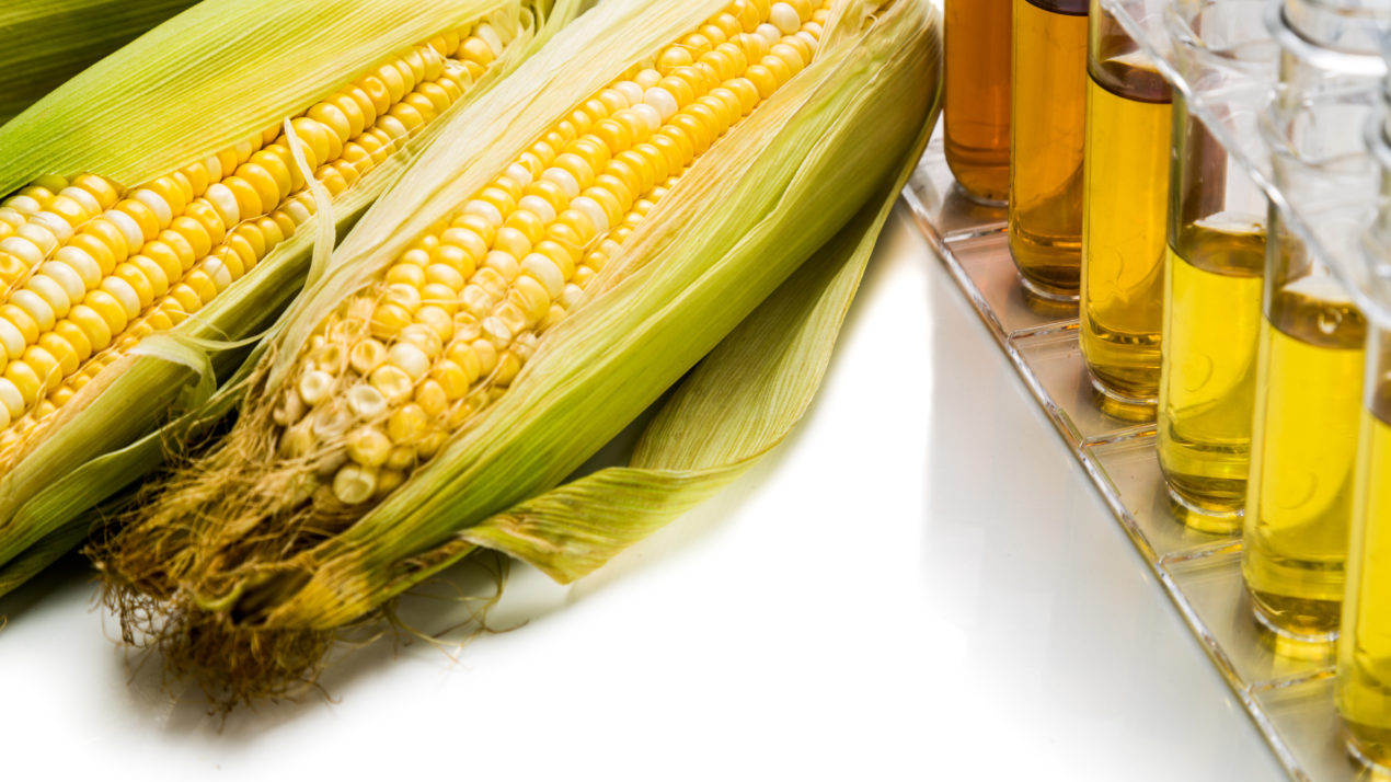 After challenges in 2020, the ethanol industry is hopeful for 2021 markets and opportunities under a new administration