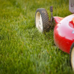 3 Easy Tips For A Perfect Lawn