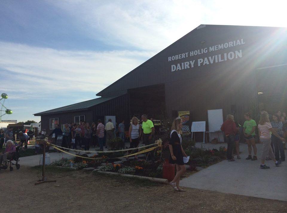 Sauk County's Livestock Scramble The First Of Alternate Shows
