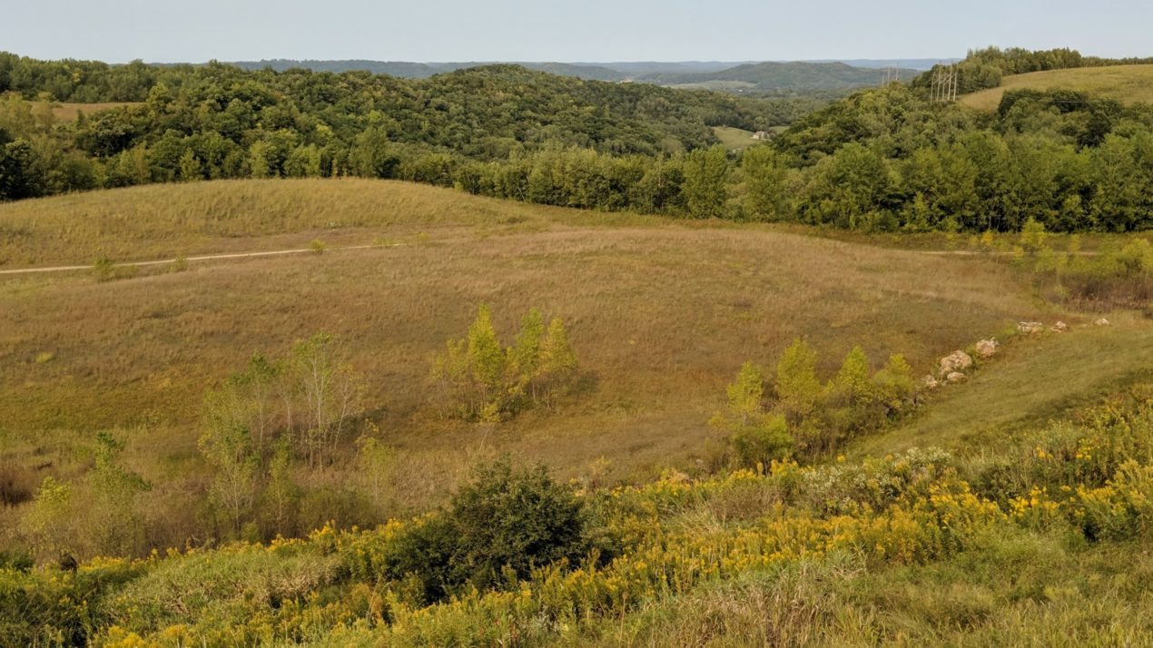 Friends of Blufflands earns $4,000 to help restore native prairie