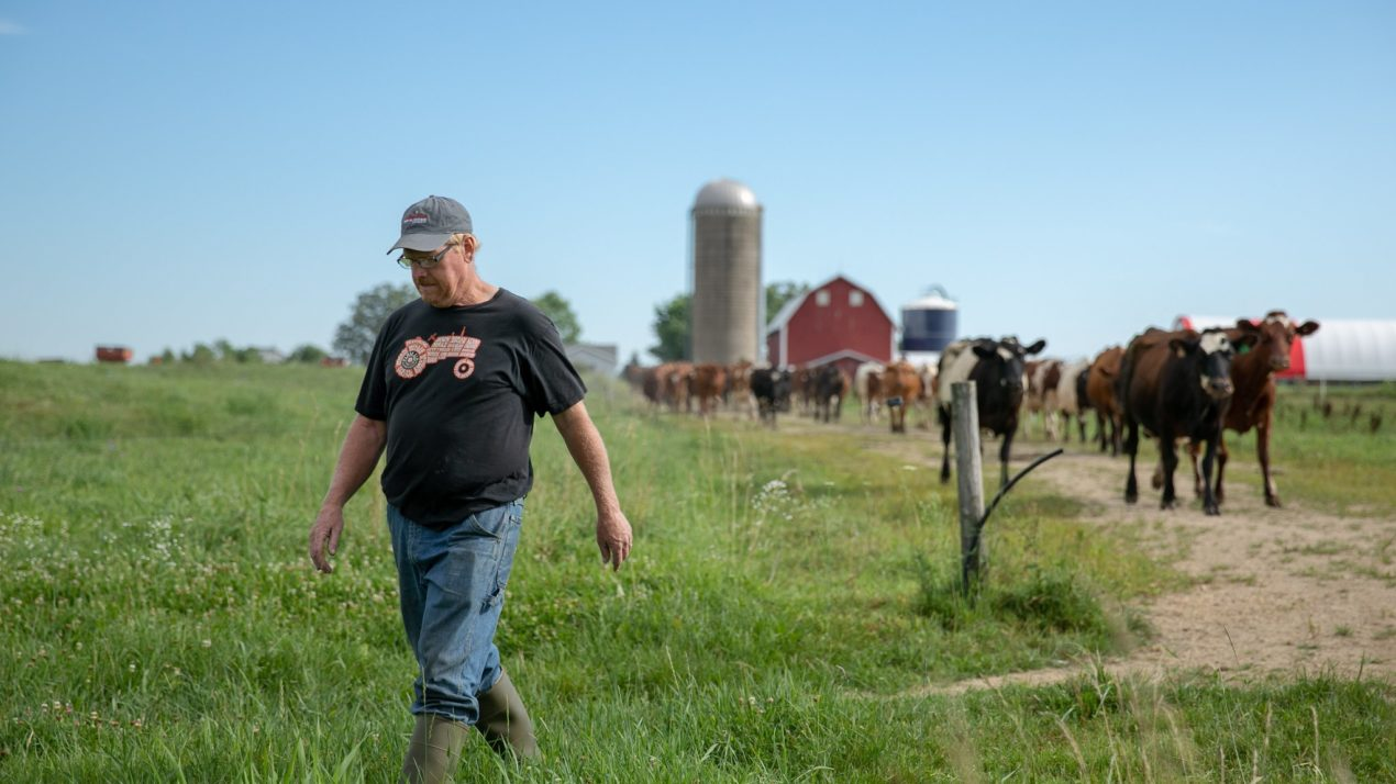 Farmers and researchers come together to form new group, Grassland 2.0, to grow grassland agriculture