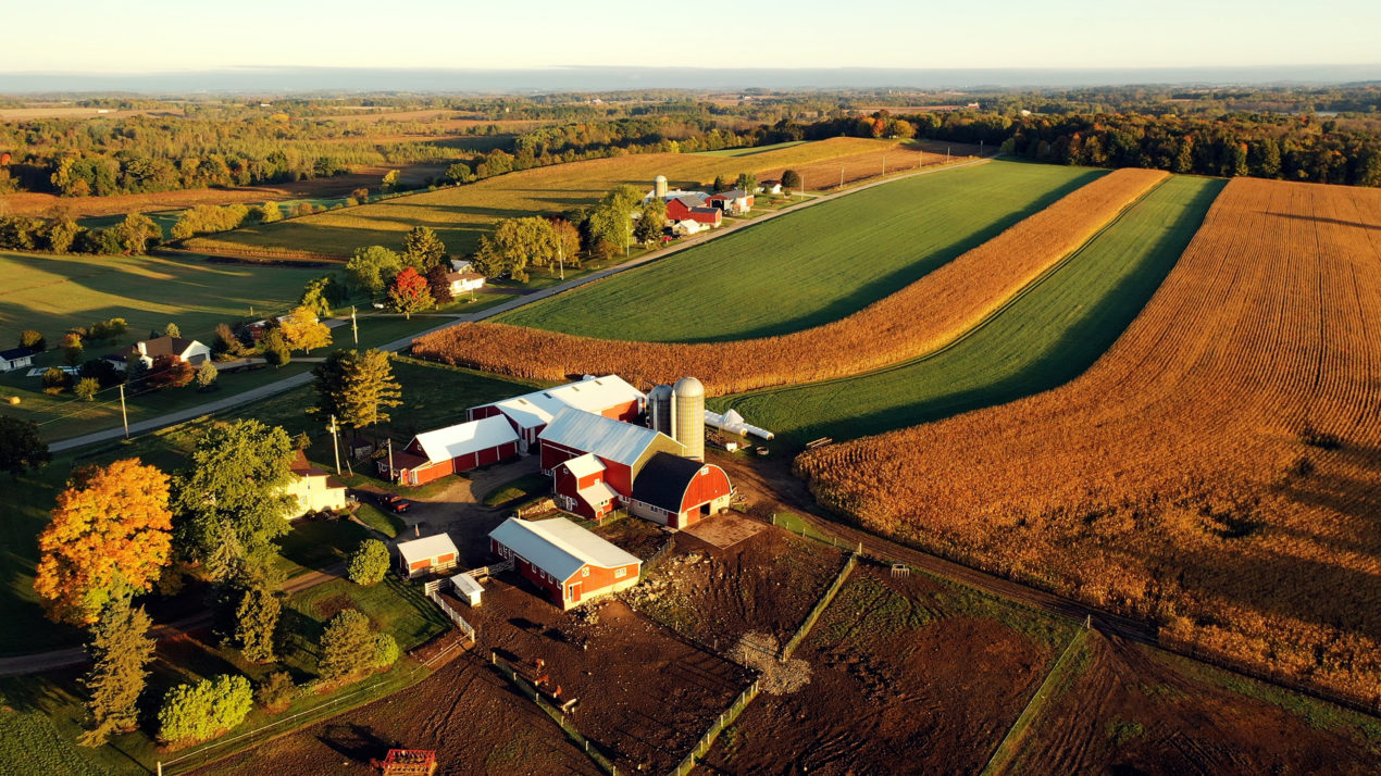 Conservation Connections: New Program Supports Underserved Farmers