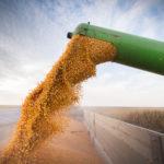 Wisconsin Farmers Prepare to Tackle Enormous Crop