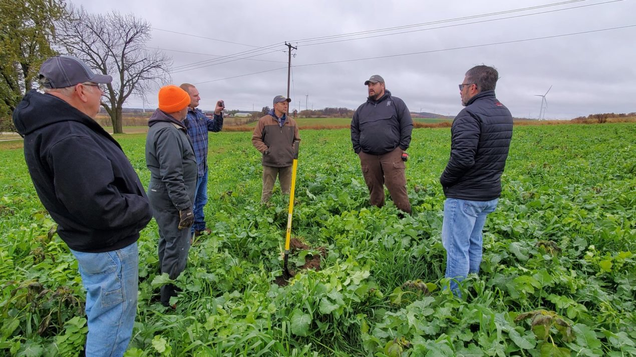 Real-Time Proof: Heavy Rains Prove Value of Cover Crops