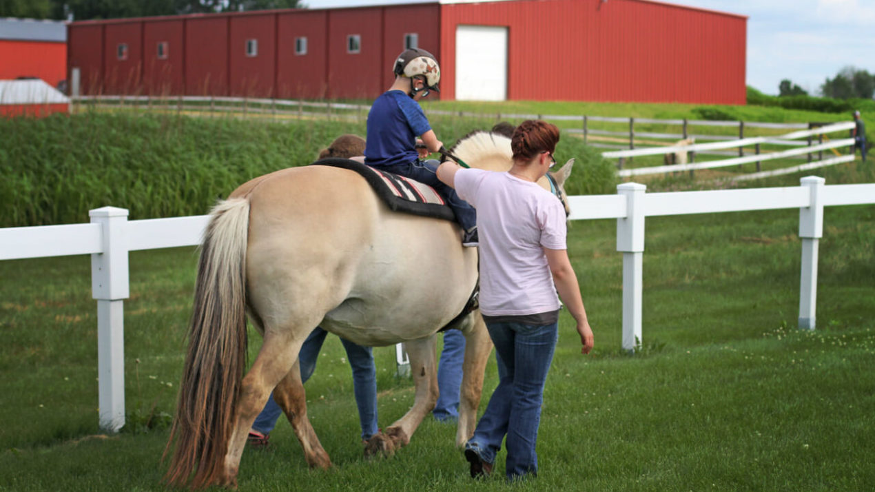 HorseSense asks for community support to continue offering therapeutic horseback riding