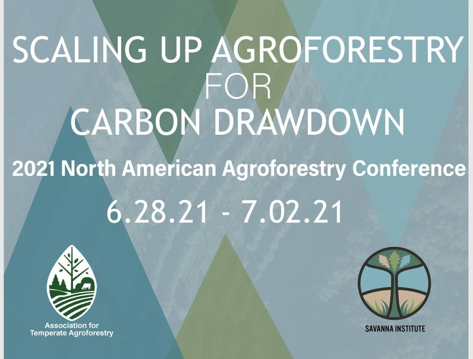 Agroforestry For Carbon Drawdown
