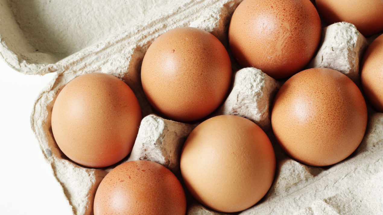 Egg Production Slightly Down
