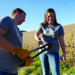 Maintaining Fences In The Fall