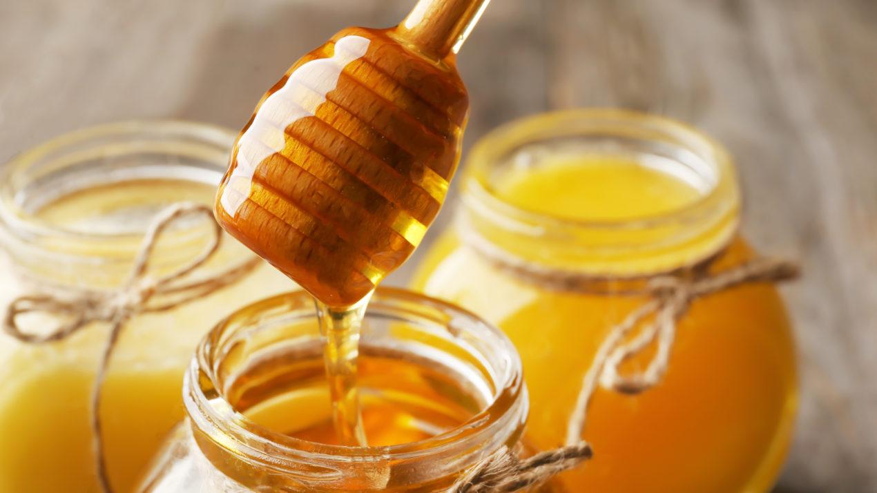 Apply For Wisconsin Honey Queen