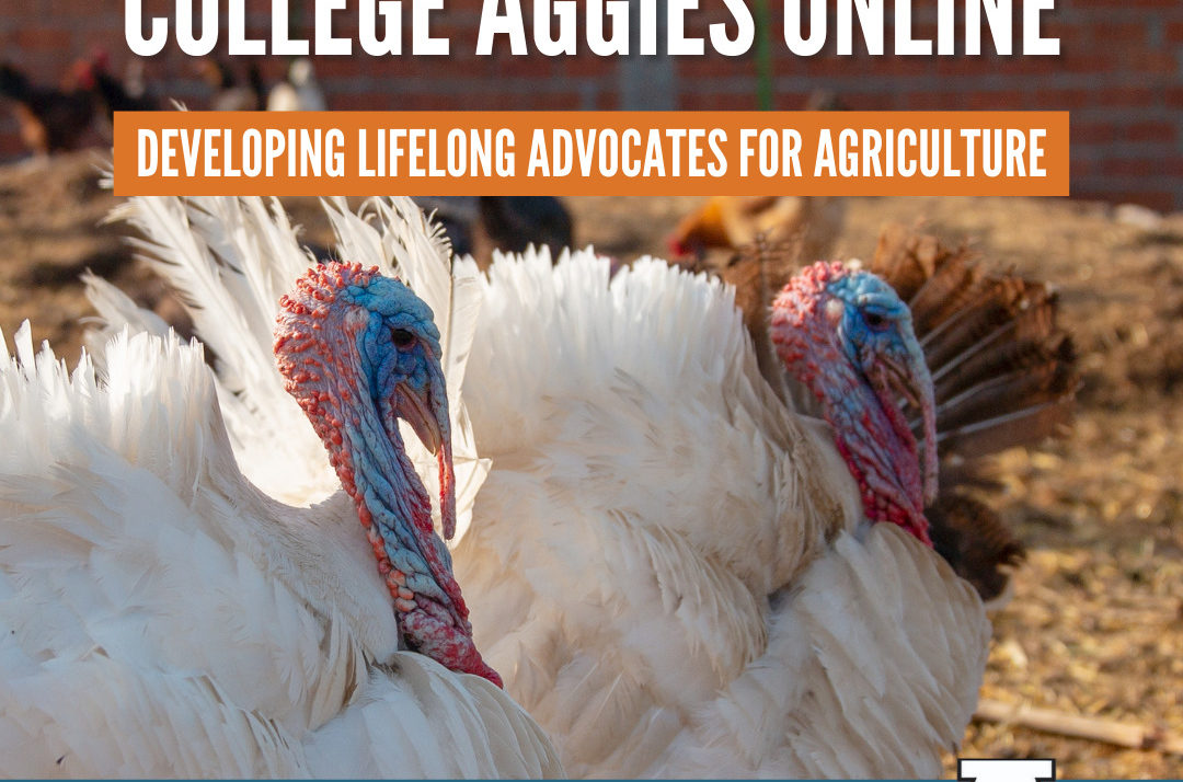 Promote Ag Online & On Campus