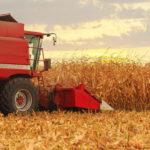 Unseasonable Warm Enables Harvest Progress