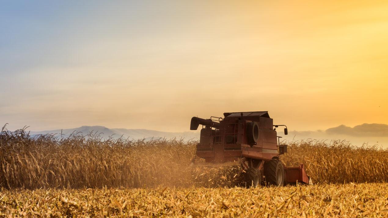 Harvest Hasn't Slowed Down Yet